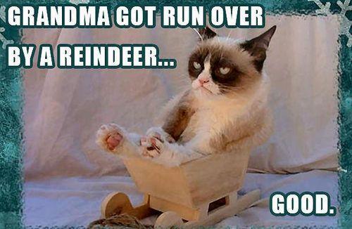 Grumpy Cat Christmas Grandma Reindeer