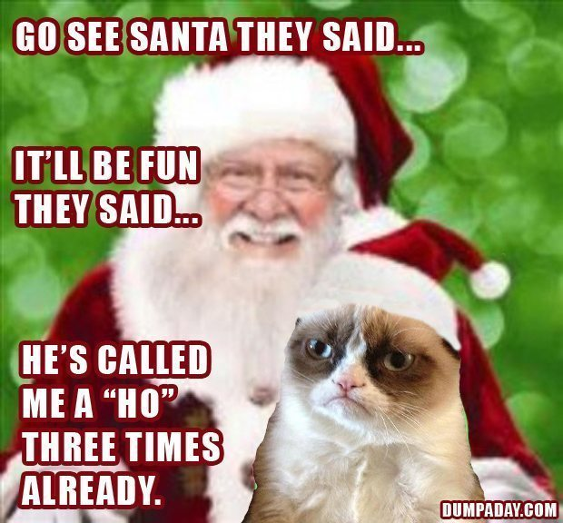 What s your favorite grumpy cat christmas meme share below