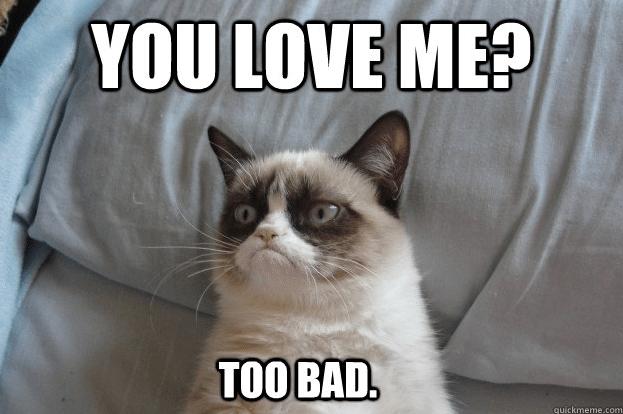 Grumpy Cat Valentine's Day Memes