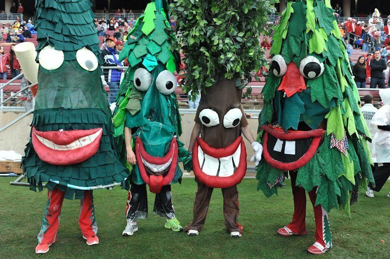 [Image: Stanford-Tree-Mascot-Monday.jpg]