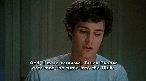 seth cohen the oc adam brody the hulk